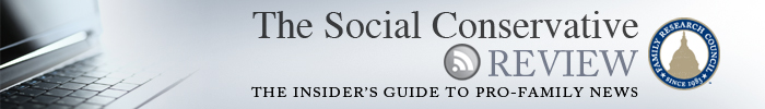 The social conservative review