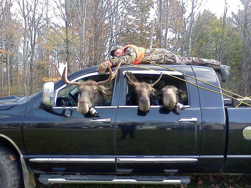 Deer hunting car