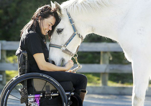 Horse with wheelchair bound person