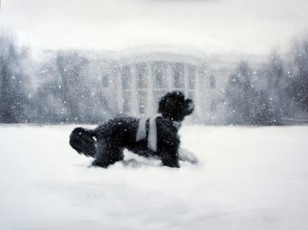 Obama xmas card 2