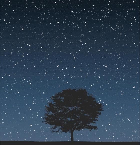 Rtb stars